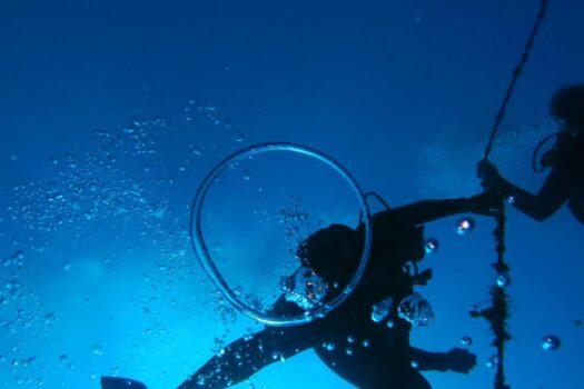 Dive Center For Sale Sosua